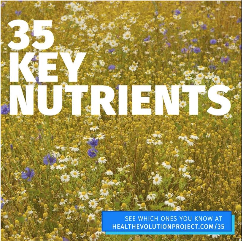 35 Key Nutrients