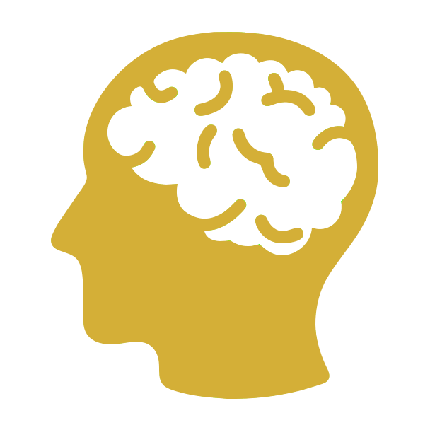 Brain Boost*