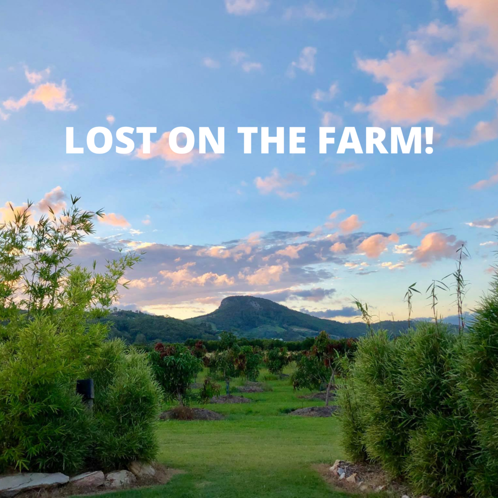 Lost on the farm