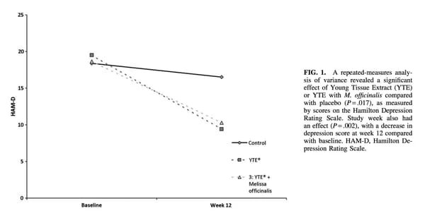 YTE Lowing Depression Study