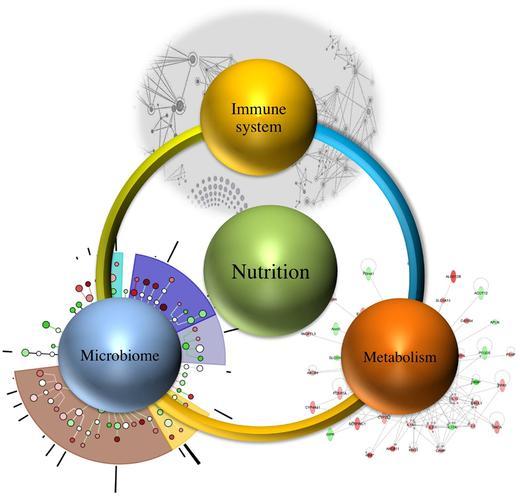 Health Evolution Immune System